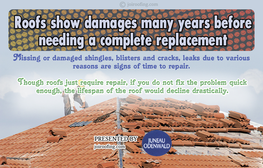 Roof maintenance infographic - Important tips roof maintenance ...